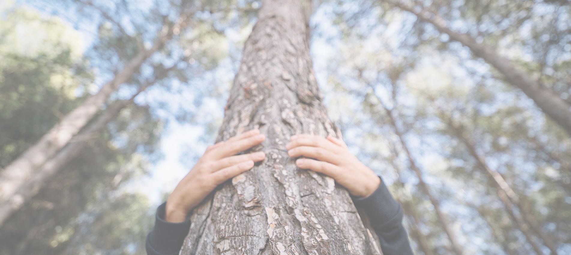 Comprometidos con la protección del medio ambiente